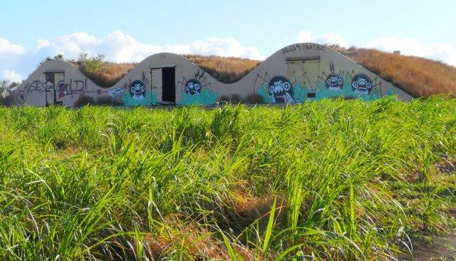 graffiti-paint-over-001re2.jpg