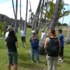 KCA Walks Coastal Heritage Trail With Expertsy 1st day