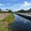 laie-wetland-001.jpg