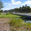 laie-wetland-007.jpg