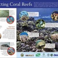 Reef Etiquette Sign
