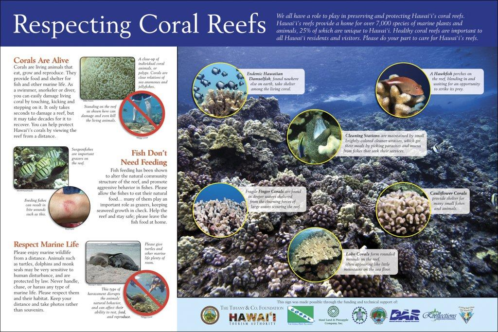 Reef Celebration & Membership Drive on November 1st Big Success