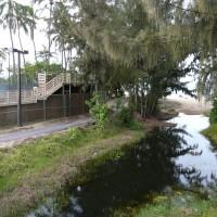 kalama-pedestrian-trail-019