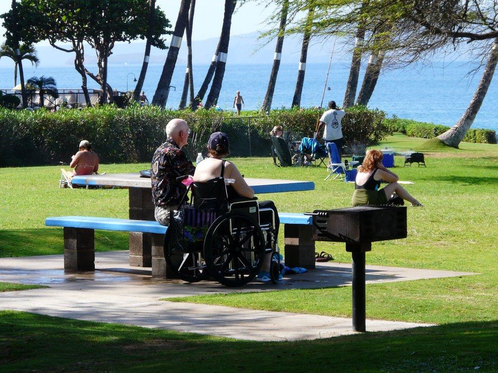 Recap of Feb. 16, 2010 Community Meeting – South Maui Park Plan