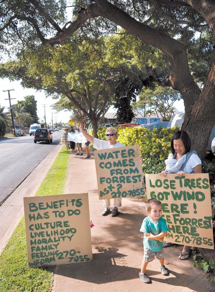 Kihei Street Trees keep KCA in the (Maui) News