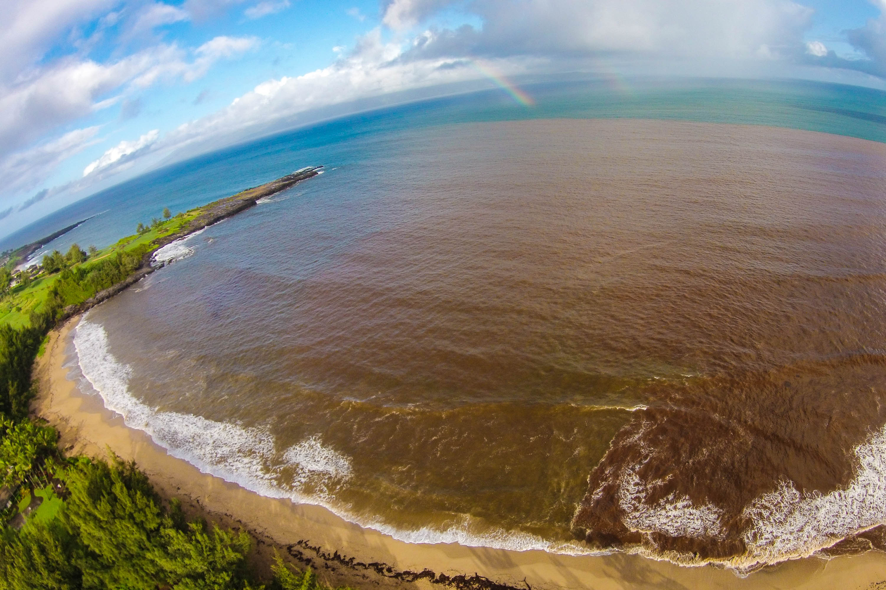 NOW ENTIRE ISLAND!Brown Water Advisory has been issued at Wailea Beach on Maui on 1/14/1