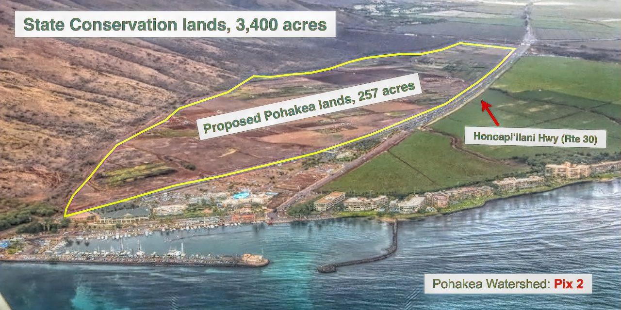 And yet one MORE action to preserve Ma'alaea Mauka
