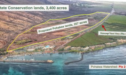 And yet one MORE action to preserve Ma'alaea Mauka