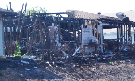 Brush cleared after homes destroyed in Kihei fire