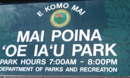 Mai Poina 'Oe Ia'U Park Signage: A Huge New One