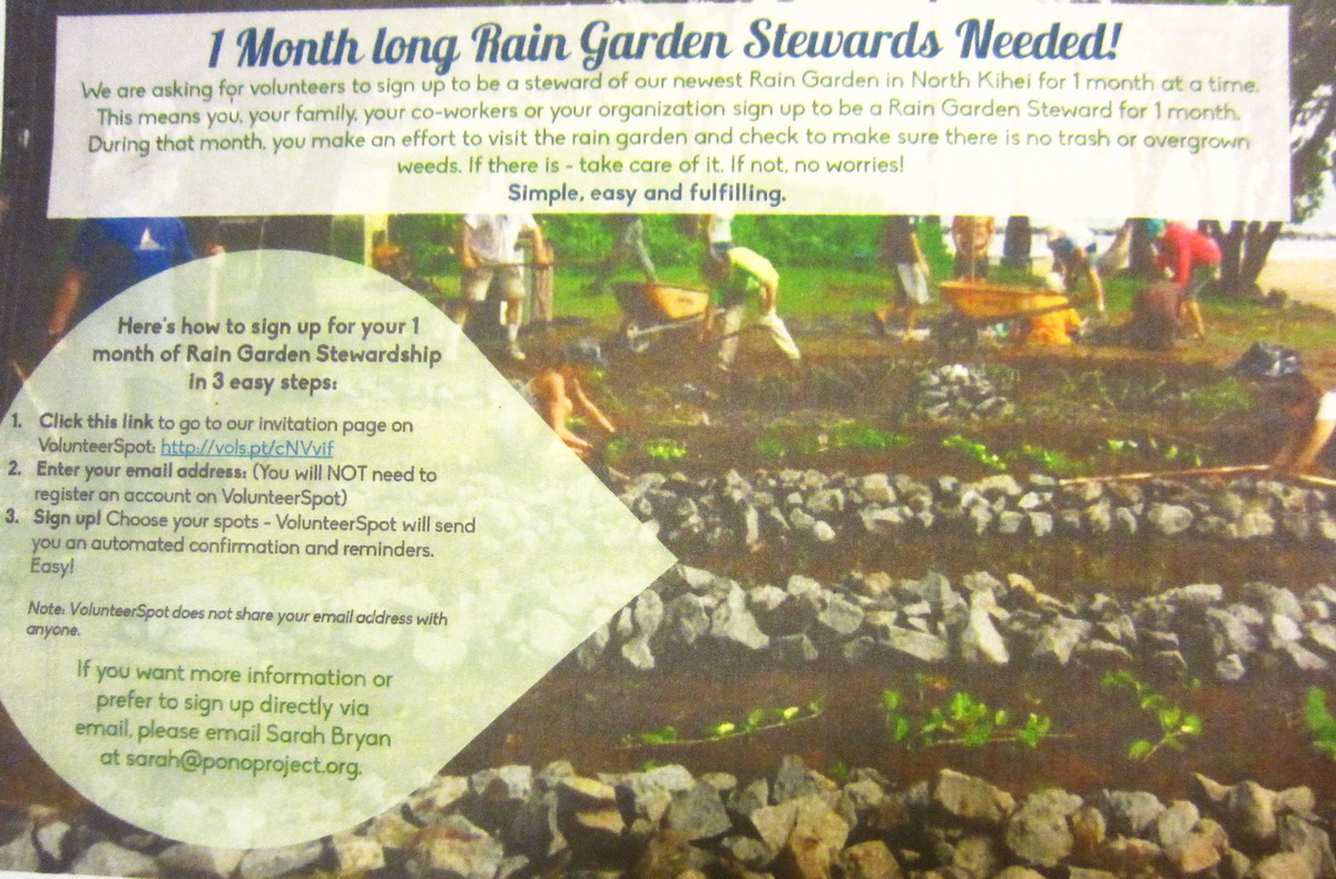 DO YOU KNOW WHAT A RAINGARDEN IS?   UPDATE