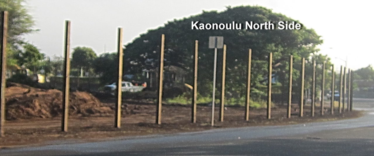 Commission answers YES!  EIGHT YEAR EXTENSION??  After several false starts real activity begins at Maui Lu site this Monday!