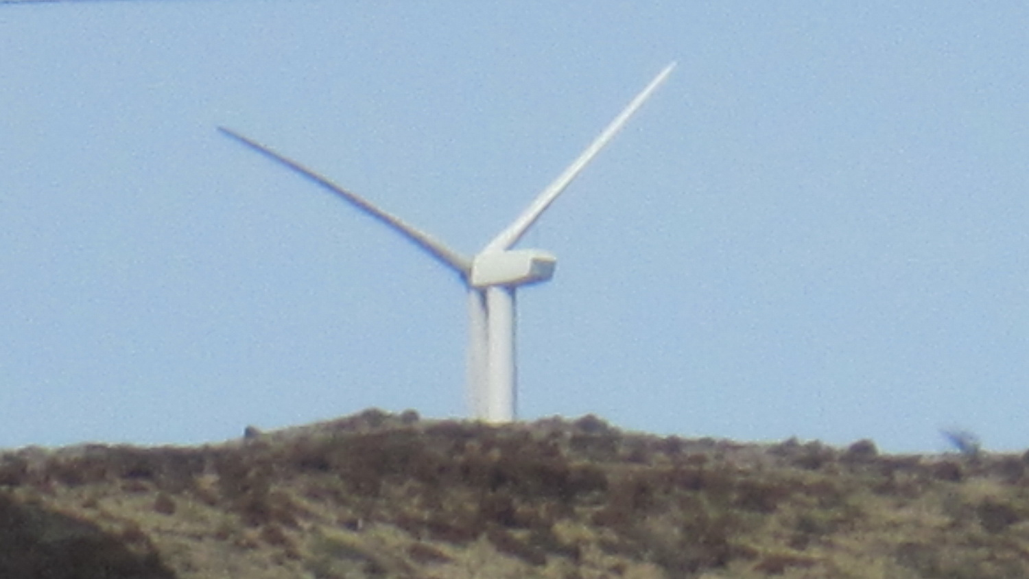 NOT TOO LATE **DLNR hearing in Kihei Monday concerns number of Endangered Species killed by wind turbines