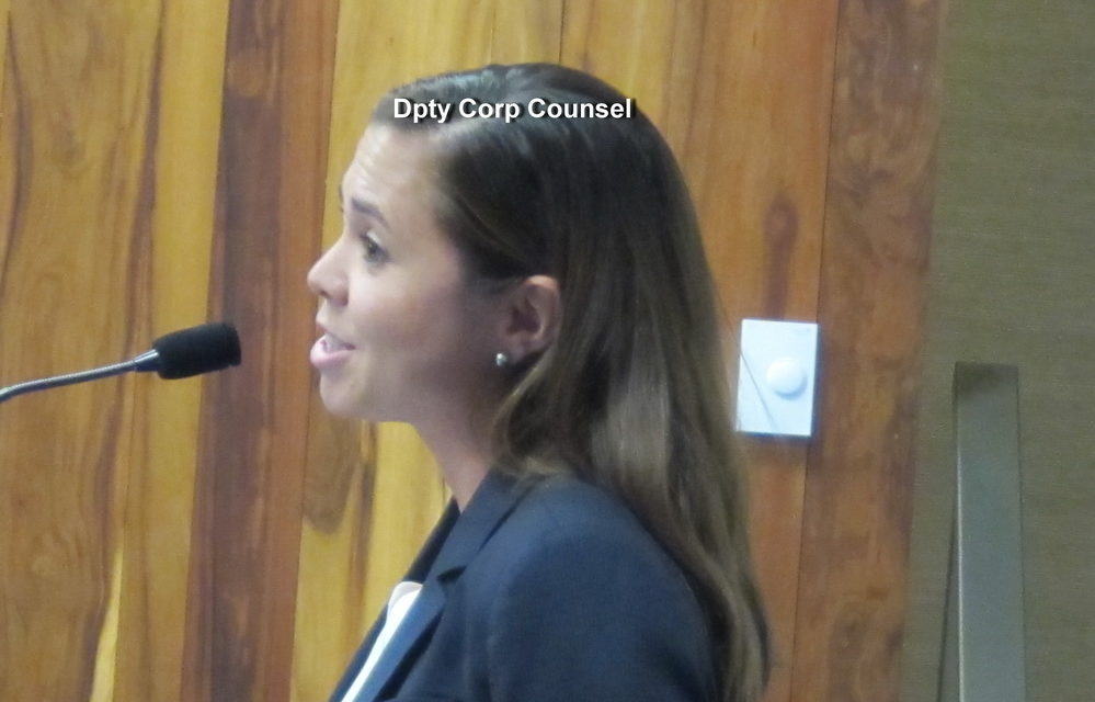 FIRST 2019 COUNCIL COMMITTEE MEETING DRAWS NUMEROUS TESTIFIERS: WHO WERE THEY?