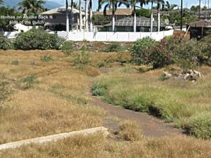 Where is the Kihei Master Drainage Plan?