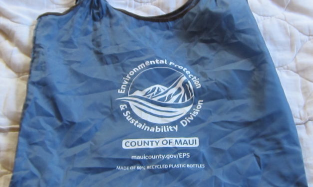 KCA BI MONTHLY MEETING REPORT: RECYCLING IN SOUTH MAUI