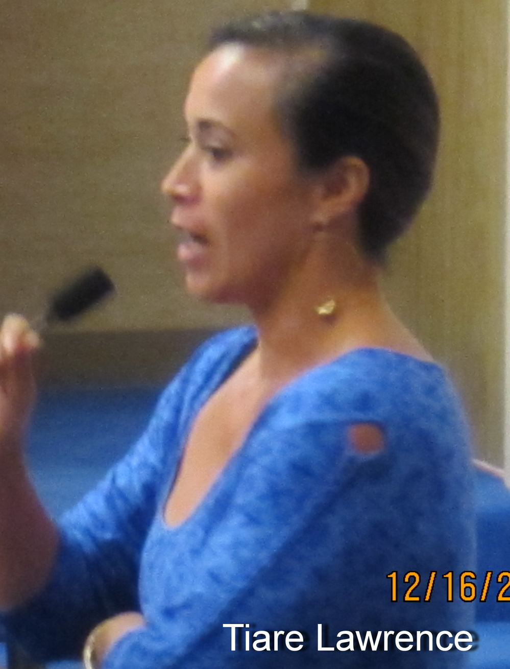 KCA Testifies to chair Carroll at his LUC Committee on Kihei's R & T Park