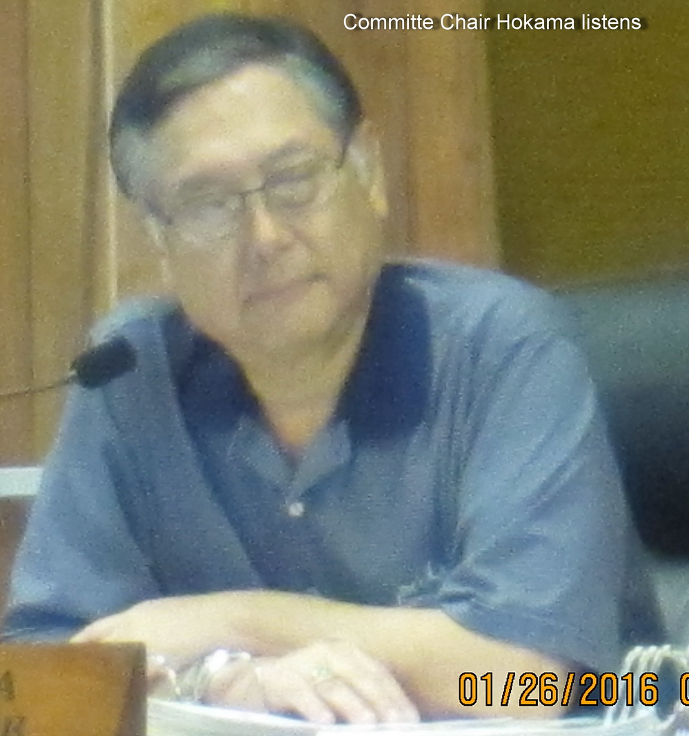 COUNTY COUNCIL COMMITTEE COMES TO KIHEI, APRIL 5, 6:00 PM