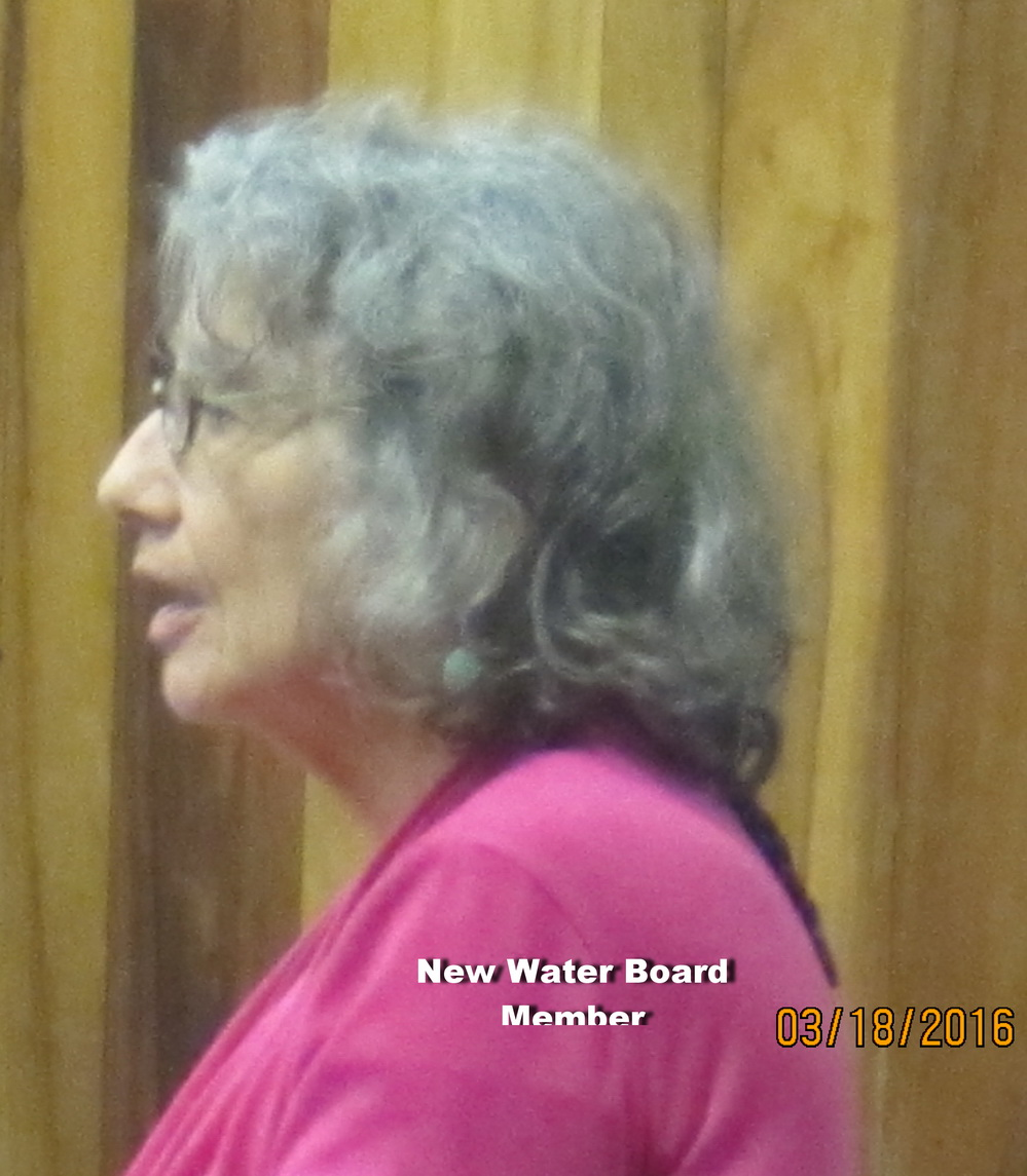 County Council Decides on Water Board appointment ; YES, 6-2 for de Naie