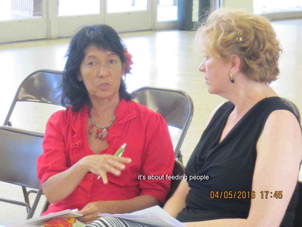 COUNTY COUNCIL BUDGET COMMITTEE IN KIHEI