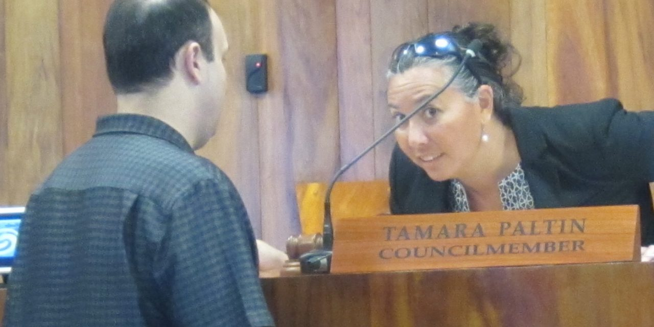 No Decision Yet on the South Maui Advisory Committee