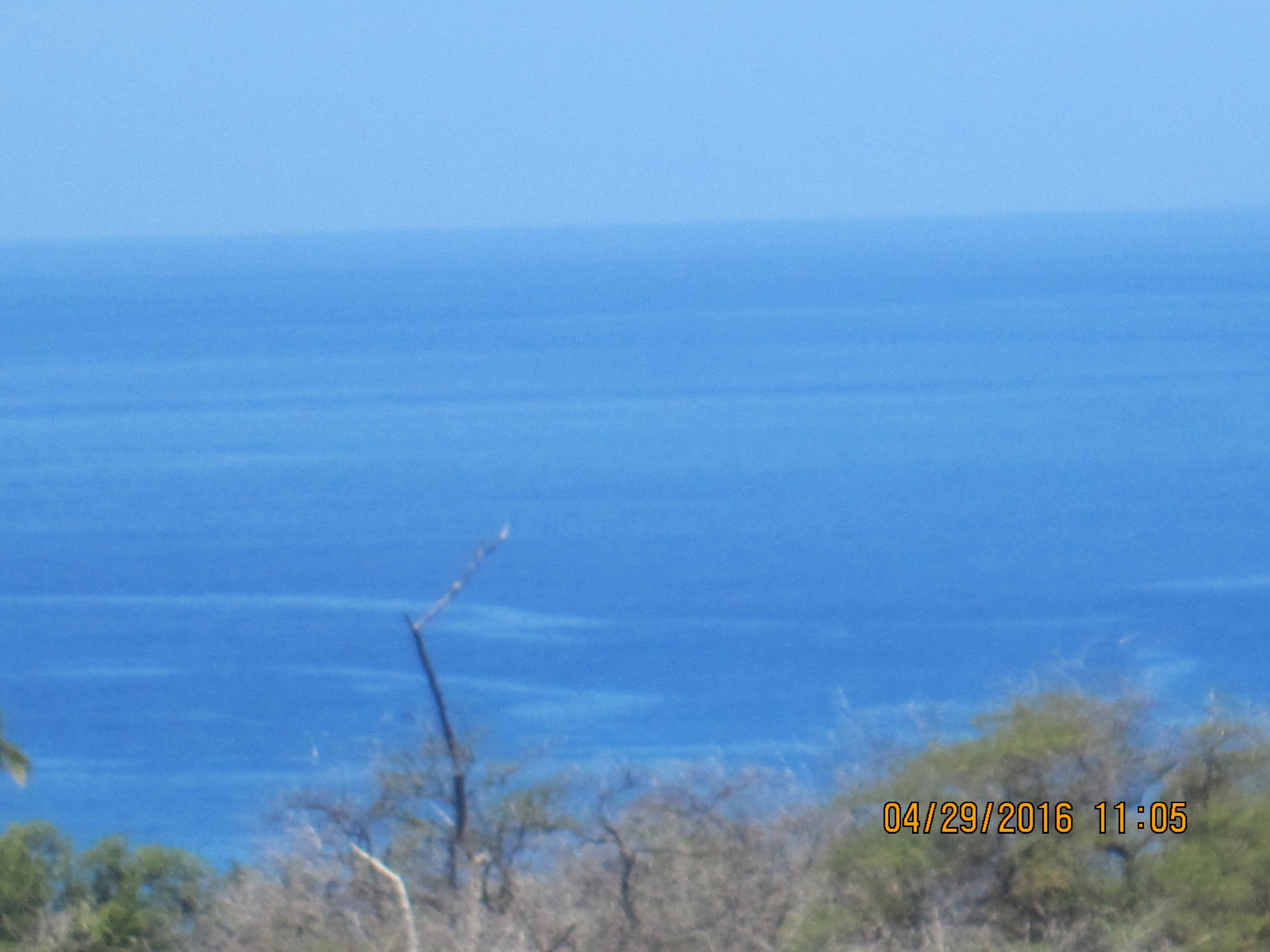 Near Shore Water Quality in South Maui Is a Long Term KCA Concern