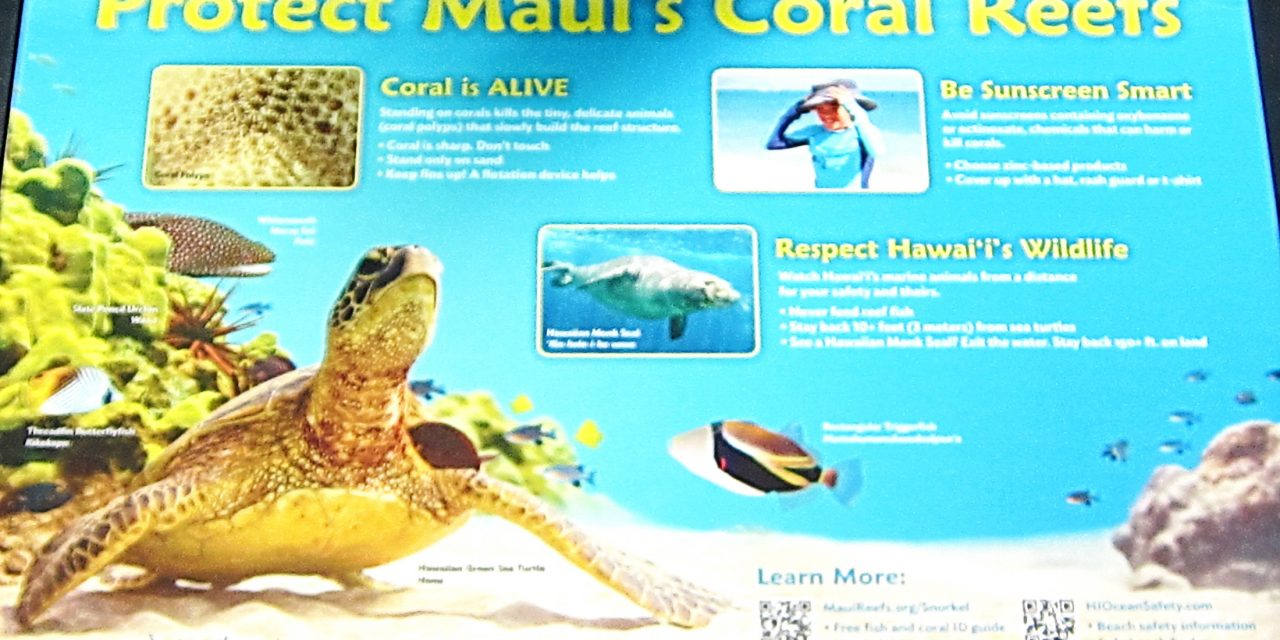 Reef Etiquette Signs Still Educating South Maui Beach Goers After Ten Years
