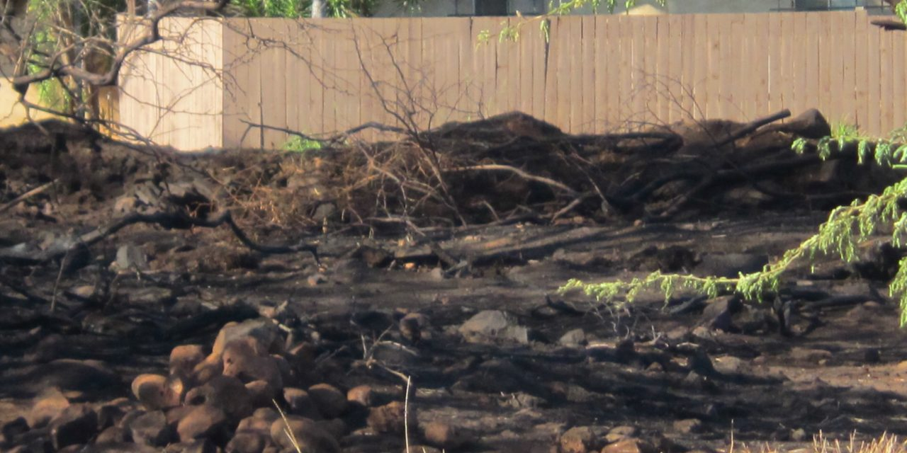Weed fire on land set to break ground for work force housing project