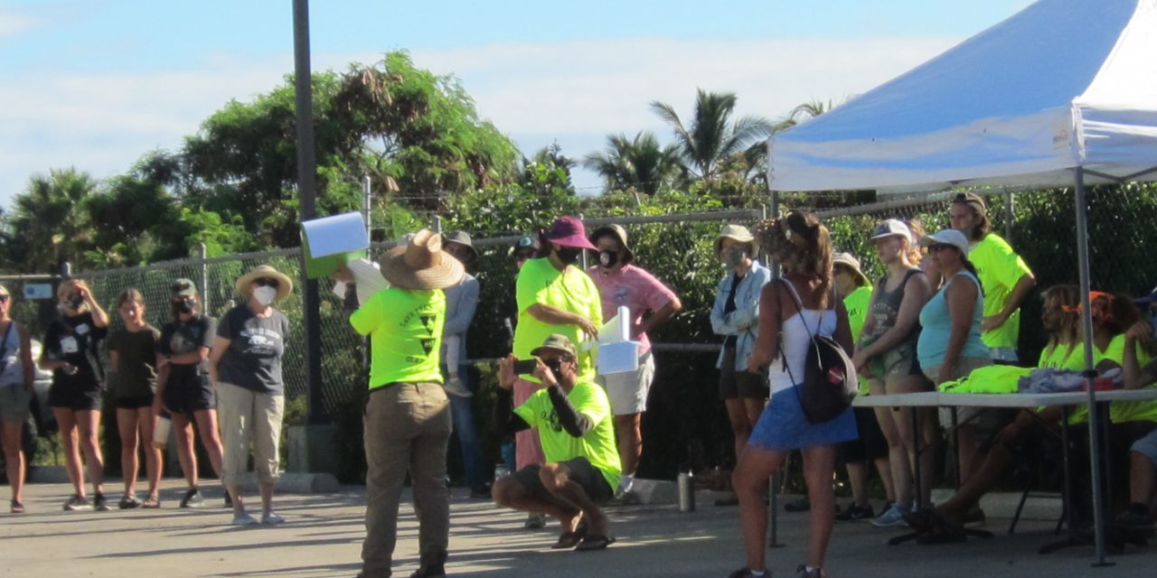 Wetlands Cleanup on Saturday Morning at La'ie along South Kihei Road