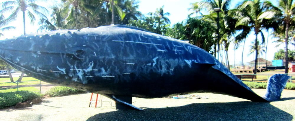 Kihei May Well Have a Whale Day Again In 2019 – Stay Tuned