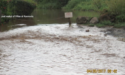 HAS SOMETHING CHANGED MAUKA CONCERNING THE HOT FLOODING SPOT AT KAONOULU AND SKR IN NORTH KIHEI?