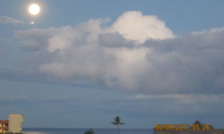 Do we call it Kihei's Whale Evening?