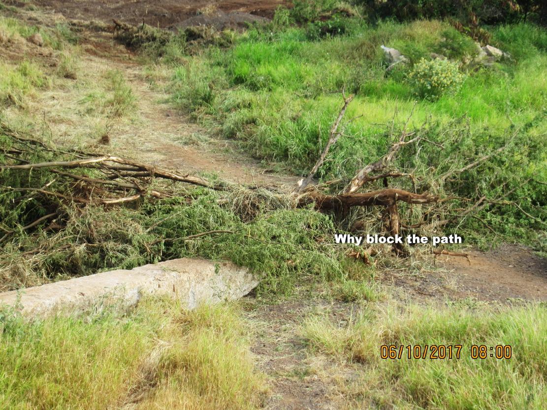 WHAT ELSE is happening around Kulanihakoi River Gulch?