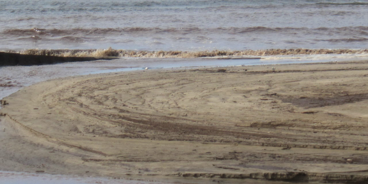 OFF AGAIN TODAY 3/2/21  on South side–Island wide Brown Water Advisory has been issued for Maui today