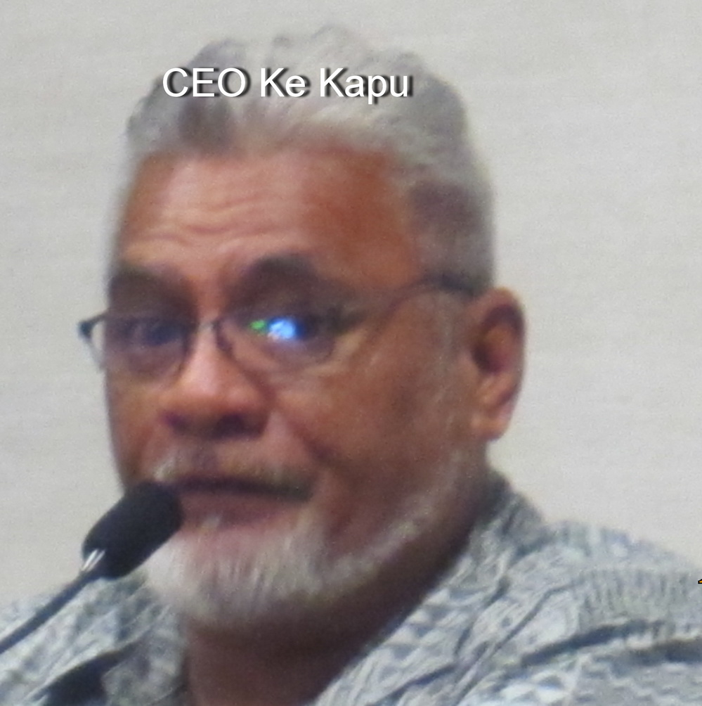 Council's LUC votes No on Kihei Wellness