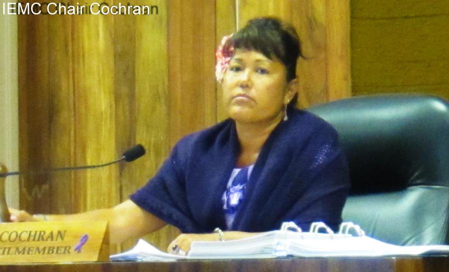 KCA testifies for Styrofoam Ban at Council Committee Monday