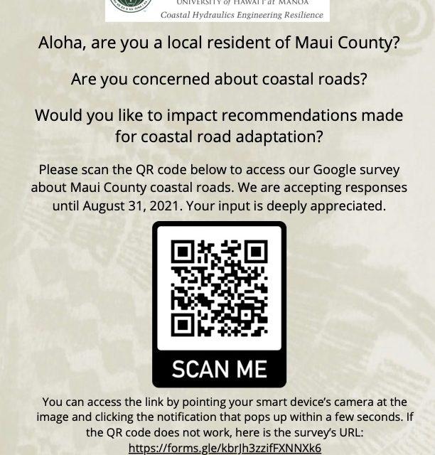 Coastal Road Adaptation Survey