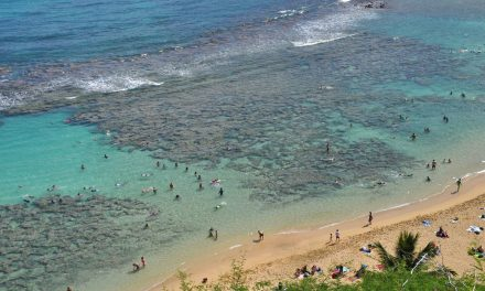 How do coral reefs protect Kihei (and Hawaii)?